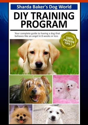 DIY dog training ebook cover