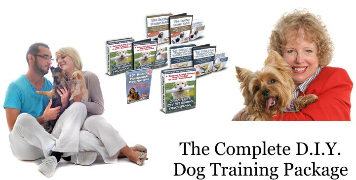 complete DIY dog training package