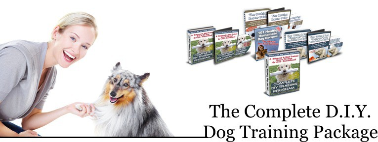 complete dog training